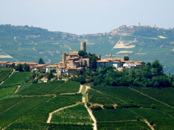 Langhe: wine and historical cellars